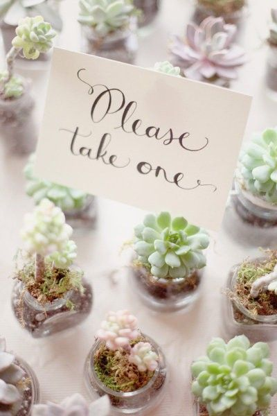Eco Wedding - Give aways